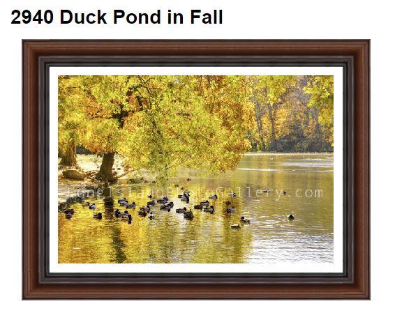 2940 duckpondfall
