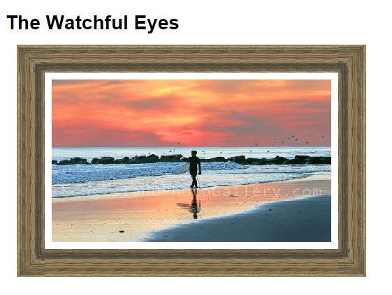 Arden_watchfuleyes