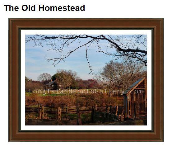 Bacchi_homestead