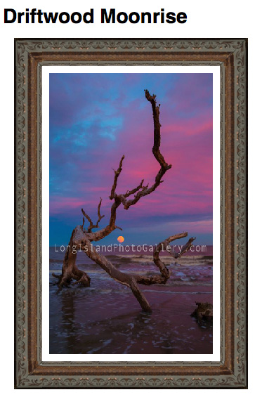 Driftwood Moonrise