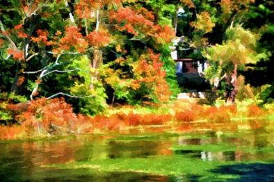 Drobo:BookStuffRemevedFromDROPBOX:Holly-Ward-Book-Dropbox:Part2a-TheBrushLensCOLLABORATION:003--Holly-Gordon_Indian-Summer-Cold-Spring-Harbor-Pond.jpg