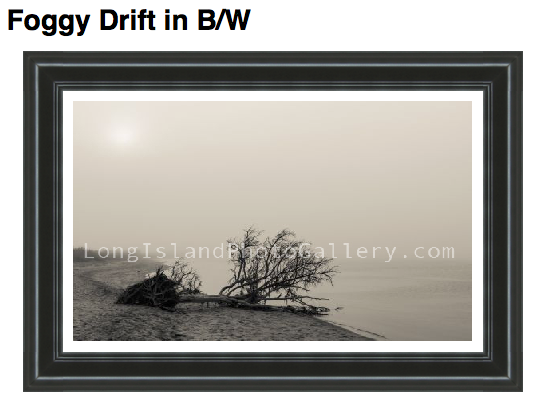 Photographer: Donna Tesone Description: Drift wood in the fog on the Great South Bay.