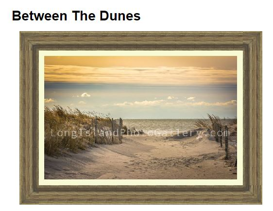 betweenthedunes_craig