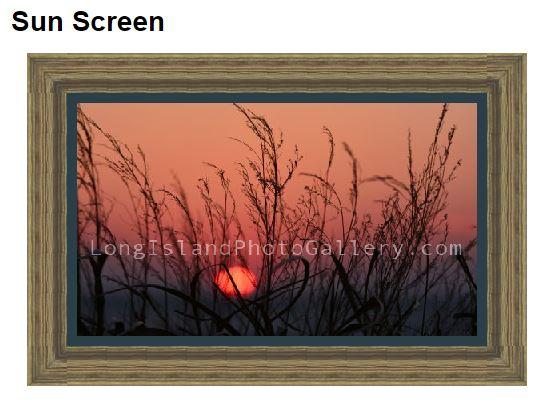 Desiderio_Sun Screen