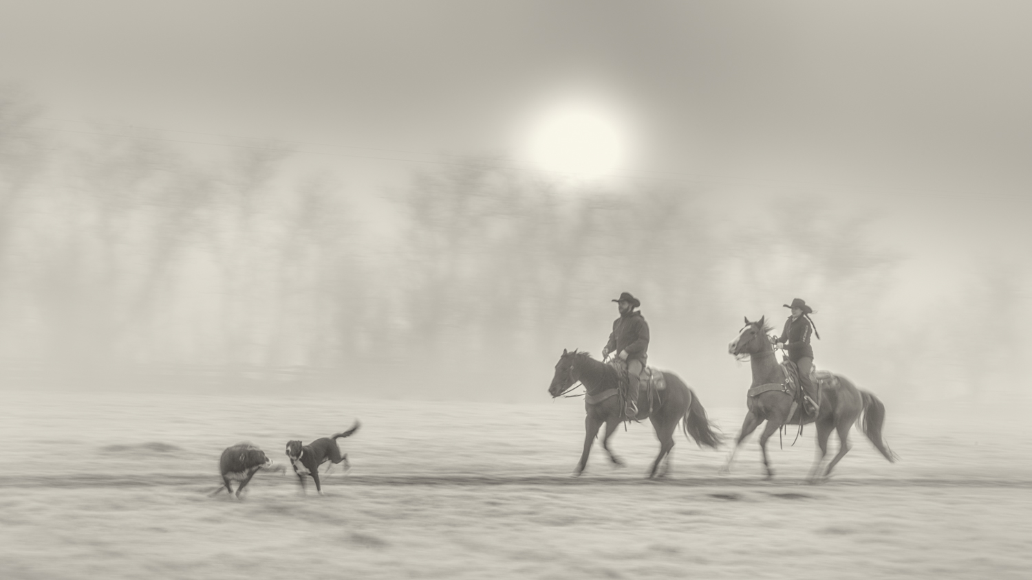 """Honorable Mention: Kathleen Massi """"Wranglers in the Mist"""""""