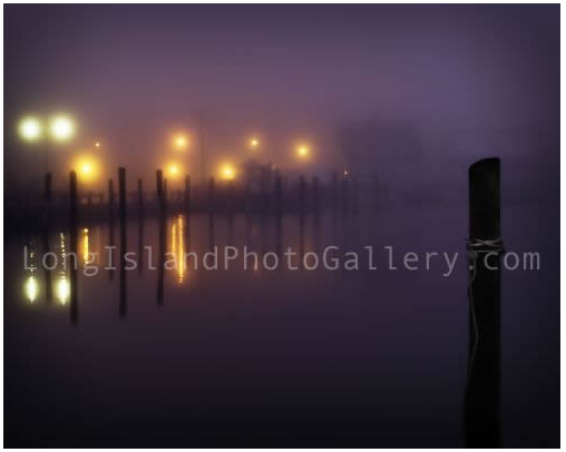 Purple Fog by Vicki Jauron