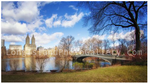 Bow Bridge on Easter Weekend by Vicki Jauron