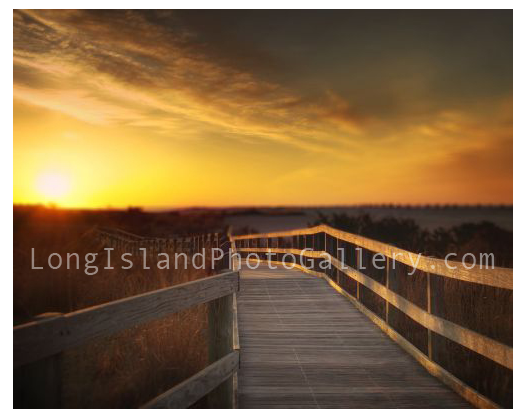 Walking to Sunrise by Vicki Jauron