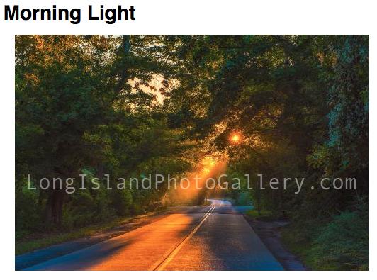 Photographer: Michael Busch Location: Brookhaven Description: Sunset Through The Trees