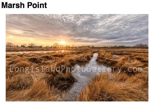 Photographer: David Arteaga Title: Marsh Point