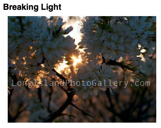 """""""Breaking Light"""" Photographer: Christopher Villiano"""