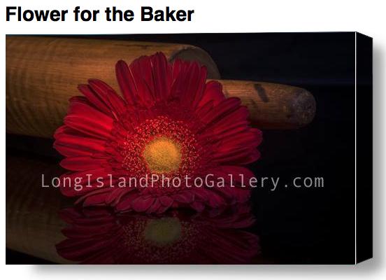 Fine Art Photographer: Kathleen Massi