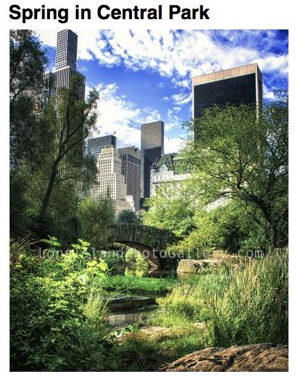 Photographer: Vicki Jauron Date: May, 2016  Location: New York City
